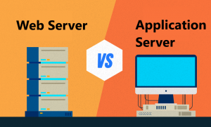 Web Application Server vs Web Server